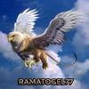 ramatogel77